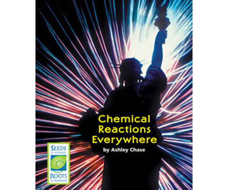 Chemical Reactions Everywhere - Seeds of Science