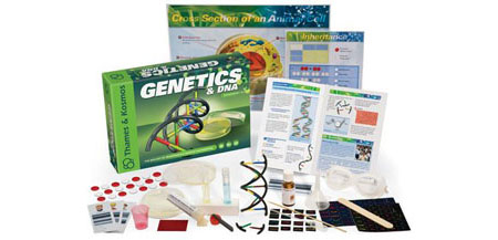 Genetics and DNA Experiment Kit by Thames and Kosmos