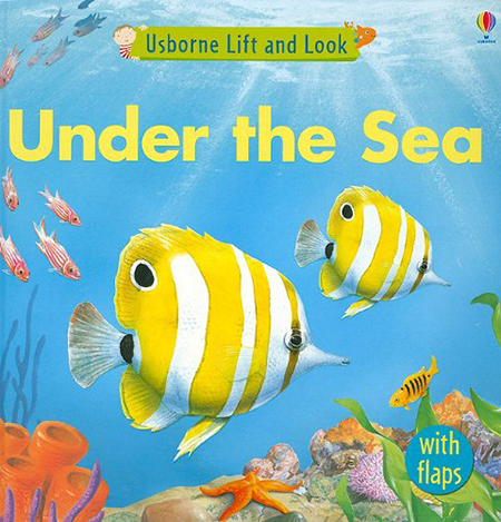 Under the Sea (Lift and Look)