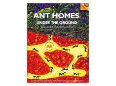 GEMS: Ant Homes Under the Ground