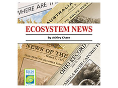 Ecosystem News - Seeds of Science