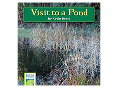 Visit to a Pond - Seeds of Science